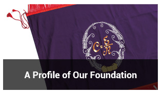 A Profile of Our Foundation